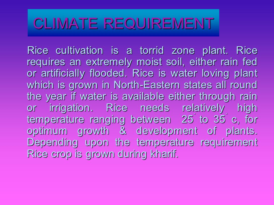 CLIMATE REQUIREMENT Rice cultivation is a torrid zone plant.