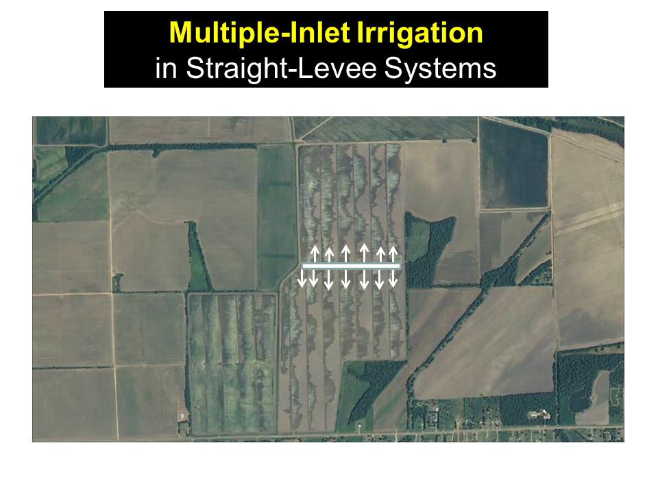 Multiple-Inlet Irrigation in Straight-Levee Systems