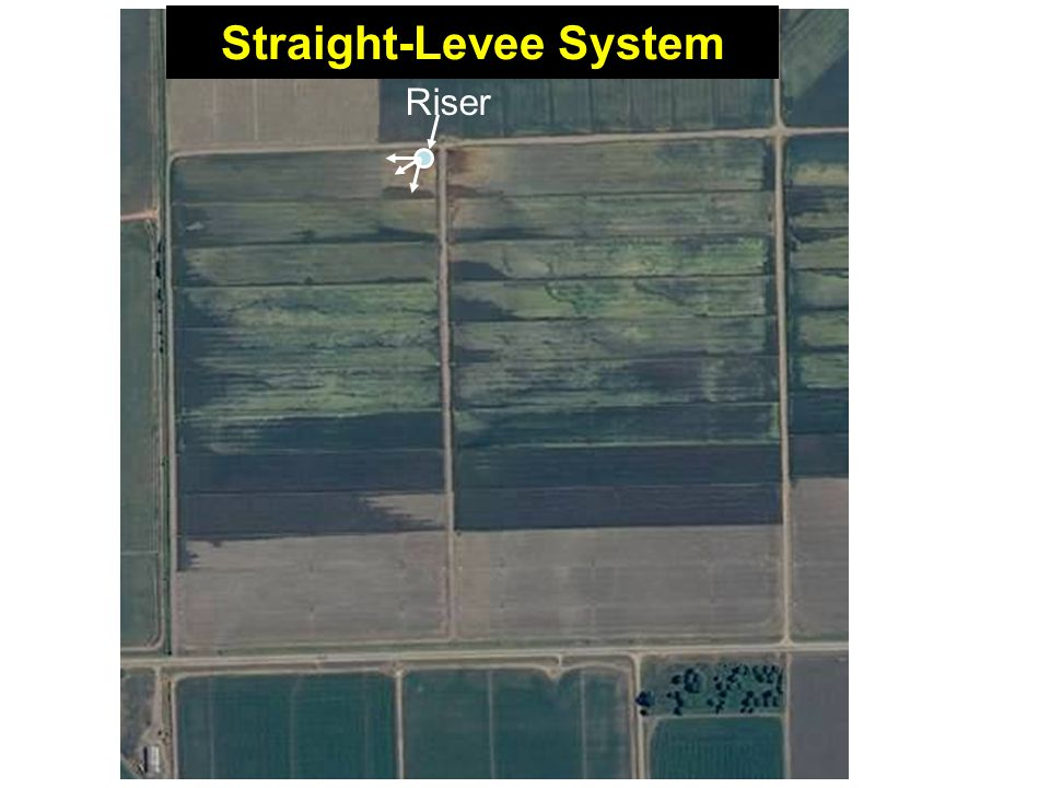 Riser Straight-Levee System