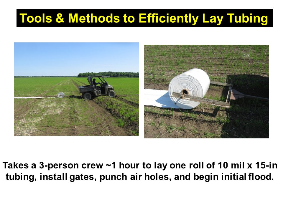 Takes a 3-person crew ~1 hour to lay one roll of 10 mil x 15-in tubing, install gates, punch air holes, and begin initial flood.