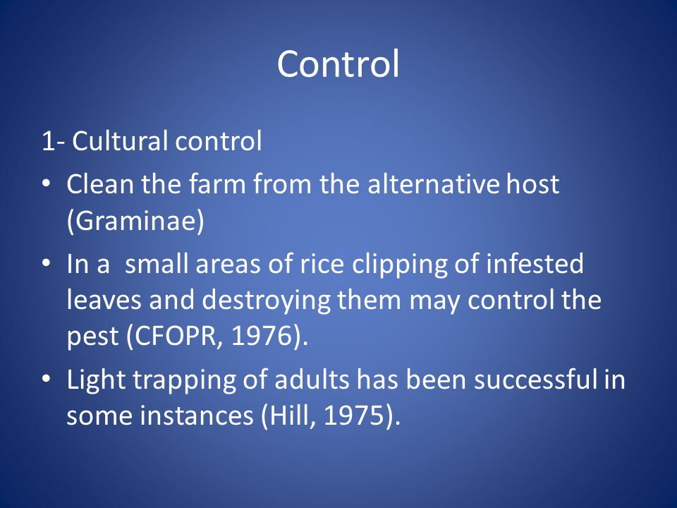 Control 1- Cultural control Clean the farm from the alternative host (Graminae) In a small areas of rice clipping of infested leaves and destroying them may control the pest (CFOPR, 1976).