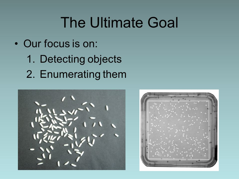 The Ultimate Goal Our focus is on: 1.Detecting objects 2.Enumerating them