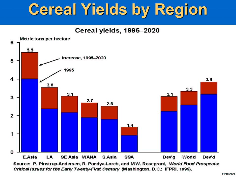 Cereal Yields by Region