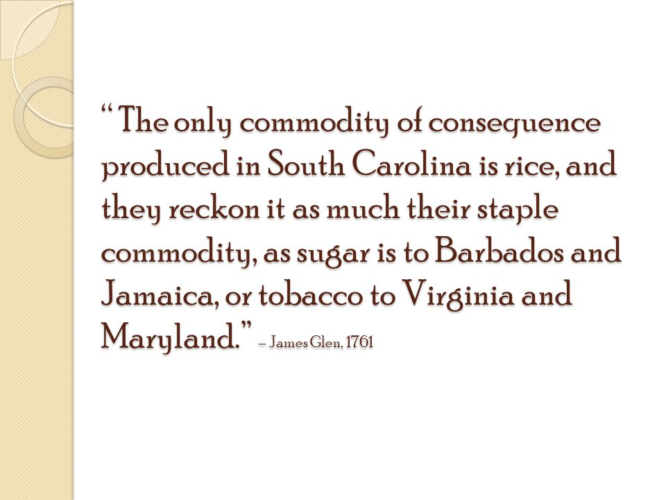The only commodity of consequence produced in South Carolina is rice, and they reckon it as much their staple commodity, as sugar is to Barbados and Jamaica, or tobacco to Virginia and Maryland. – James Glen, 1761
