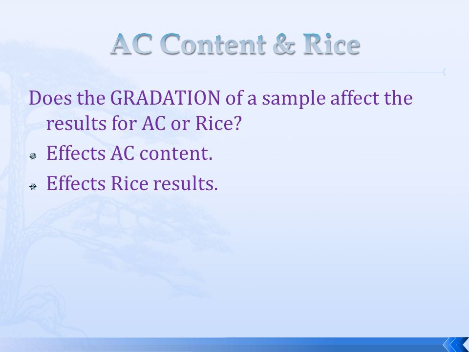 Does the GRADATION of a sample affect the results for AC or Rice.