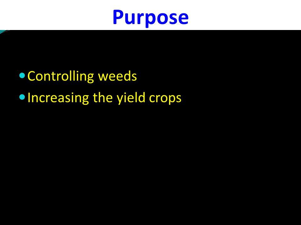 Sampling intervals after herbicide application (Days) Butachlor Residue (mg kg -1 ) x (1 kg/ha)2 x (2 kg/ha) 0 0.3280.658 10 0.1940.300 20 0.0070.020 30BDL 0.005 45BDL 90BDL HarvestBDL Sampling intervals after herbicide application (Days) Pretilachlor Residue (mg kg -1 ) x (1 kg/ha)2 x (2 kg/ha) 00.2140.486 150.0960.246 300.0580.189 450.0200.058 60BDL0.014 90BDL HarvestBDL Persistence in Rice grown soil