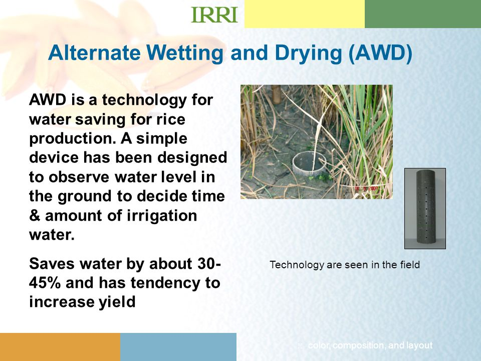 :: color, composition, and layout Technology are seen in the field Alternate Wetting and Drying (AWD) AWD is a technology for water saving for rice production.