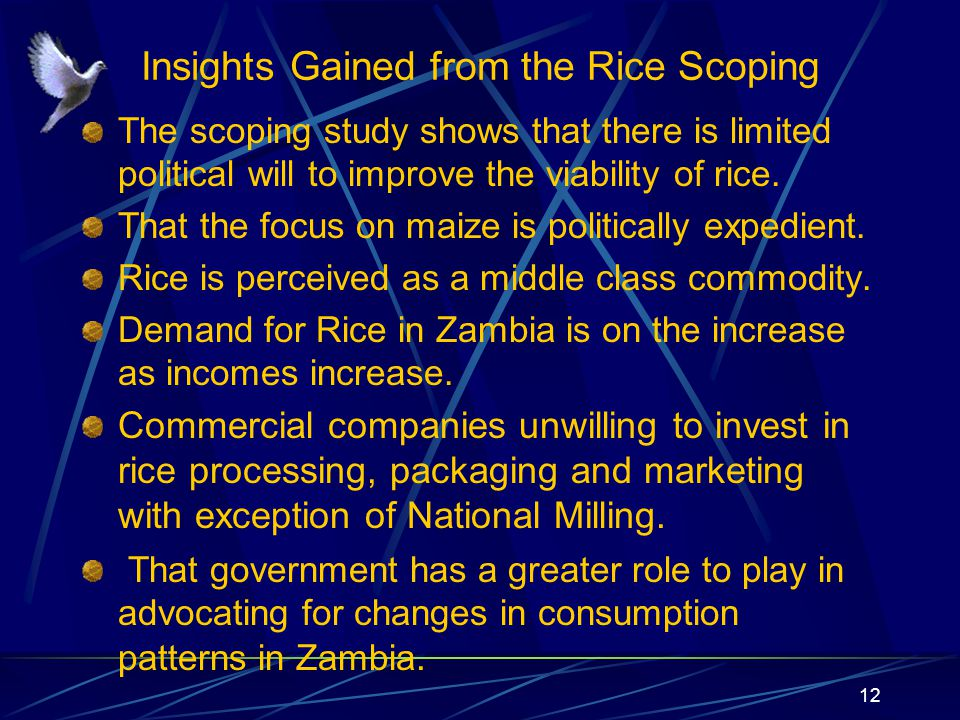 Insights Gained from the Rice Scoping The scoping study shows that there is limited political will to improve the viability of rice.