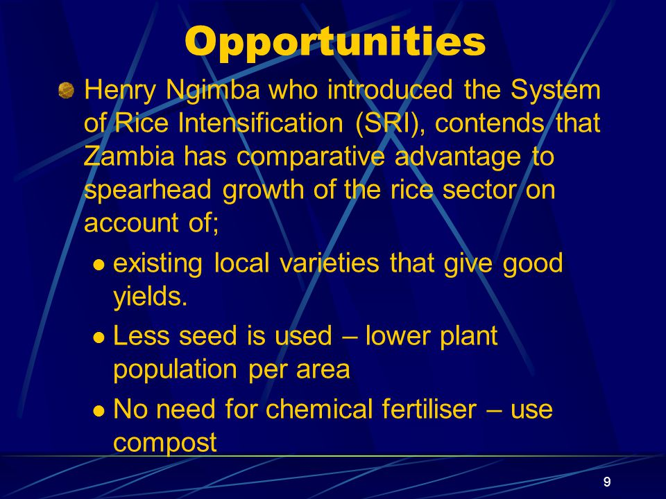 Opportunities Henry Ngimba who introduced the System of Rice Intensification (SRI), contends that Zambia has comparative advantage to spearhead growth of the rice sector on account of; existing local varieties that give good yields.