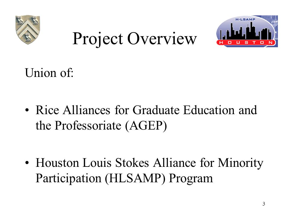 3 Project Overview Union of: Rice Alliances for Graduate Education and the Professoriate (AGEP) Houston Louis Stokes Alliance for Minority Participation (HLSAMP) Program