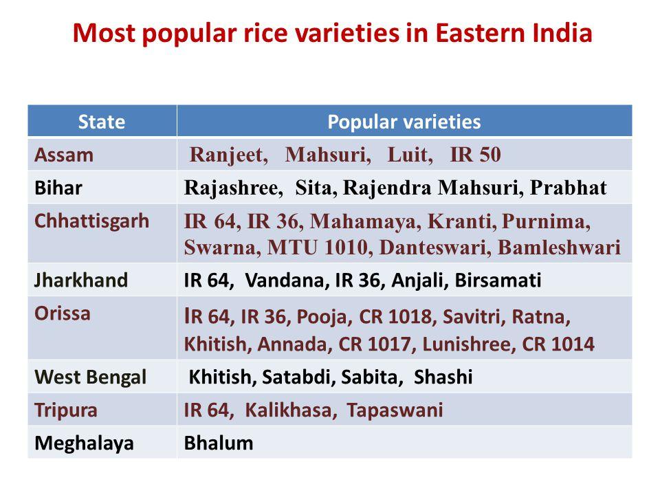 Most popular rice varieties in Eastern India StatePopular varieties Assam Ranjeet, Mahsuri, Luit, IR 50 Bihar Rajashree, Sita, Rajendra Mahsuri, Prabhat Chhattisgarh IR 64, IR 36, Mahamaya, Kranti, Purnima, Swarna, MTU 1010, Danteswari, Bamleshwari JharkhandIR 64, Vandana, IR 36, Anjali, Birsamati Orissa I R 64, IR 36, Pooja, CR 1018, Savitri, Ratna, Khitish, Annada, CR 1017, Lunishree, CR 1014 West Bengal Khitish, Satabdi, Sabita, Shashi TripuraIR 64, Kalikhasa, Tapaswani MeghalayaBhalum