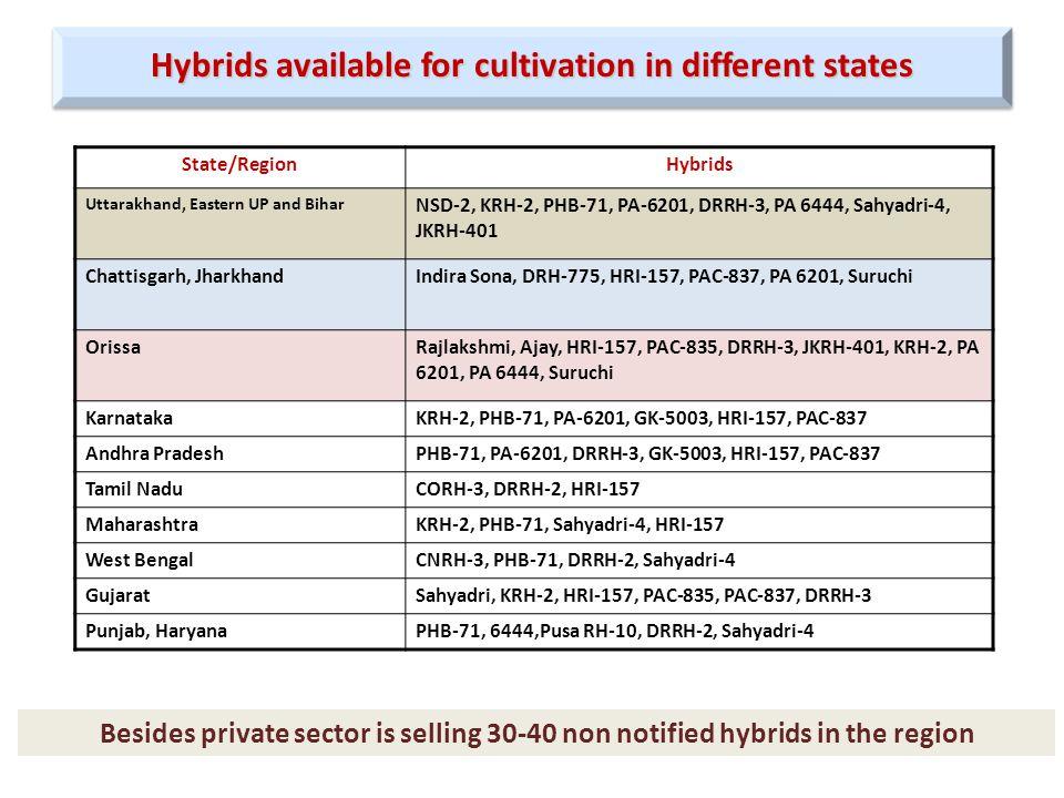 State/RegionHybrids Uttarakhand, Eastern UP and Bihar NSD-2, KRH-2, PHB-71, PA-6201, DRRH-3, PA 6444, Sahyadri-4, JKRH-401 Chattisgarh, JharkhandIndira Sona, DRH-775, HRI-157, PAC-837, PA 6201, Suruchi OrissaRajlakshmi, Ajay, HRI-157, PAC-835, DRRH-3, JKRH-401, KRH-2, PA 6201, PA 6444, Suruchi KarnatakaKRH-2, PHB-71, PA-6201, GK-5003, HRI-157, PAC-837 Andhra PradeshPHB-71, PA-6201, DRRH-3, GK-5003, HRI-157, PAC-837 Tamil NaduCORH-3, DRRH-2, HRI-157 MaharashtraKRH-2, PHB-71, Sahyadri-4, HRI-157 West BengalCNRH-3, PHB-71, DRRH-2, Sahyadri-4 GujaratSahyadri, KRH-2, HRI-157, PAC-835, PAC-837, DRRH-3 Punjab, HaryanaPHB-71, 6444,Pusa RH-10, DRRH-2, Sahyadri-4 Hybrids available for cultivation in different states Besides private sector is selling 30-40 non notified hybrids in the region