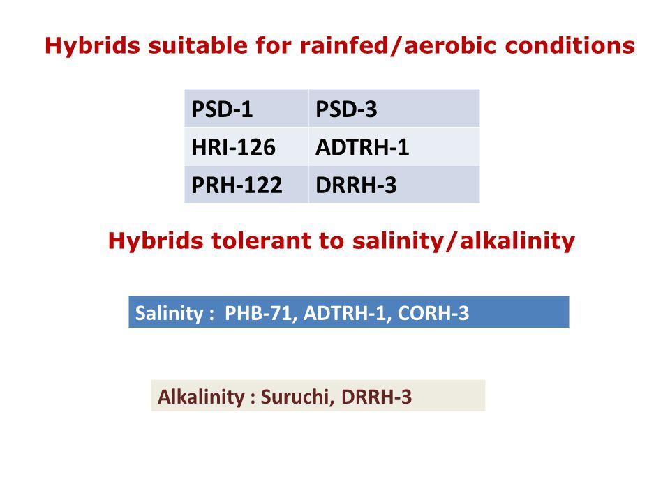 Hybrids suitable for rainfed/aerobic conditions PSD-1PSD-3 HRI-126ADTRH-1 PRH-122DRRH-3 Hybrids tolerant to salinity/alkalinity Salinity : PHB-71, ADTRH-1, CORH-3 Alkalinity : Suruchi, DRRH-3