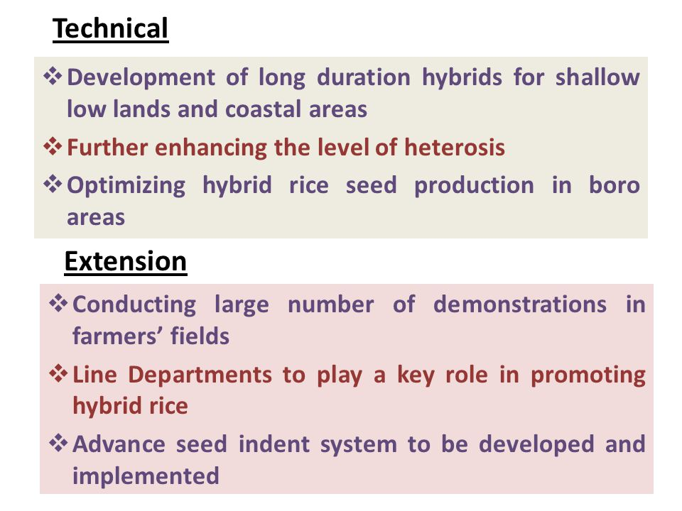Technical  Development of long duration hybrids for shallow low lands and coastal areas  Further enhancing the level of heterosis  Optimizing hybrid rice seed production in boro areas Extension  Conducting large number of demonstrations in farmers' fields  Line Departments to play a key role in promoting hybrid rice  Advance seed indent system to be developed and implemented
