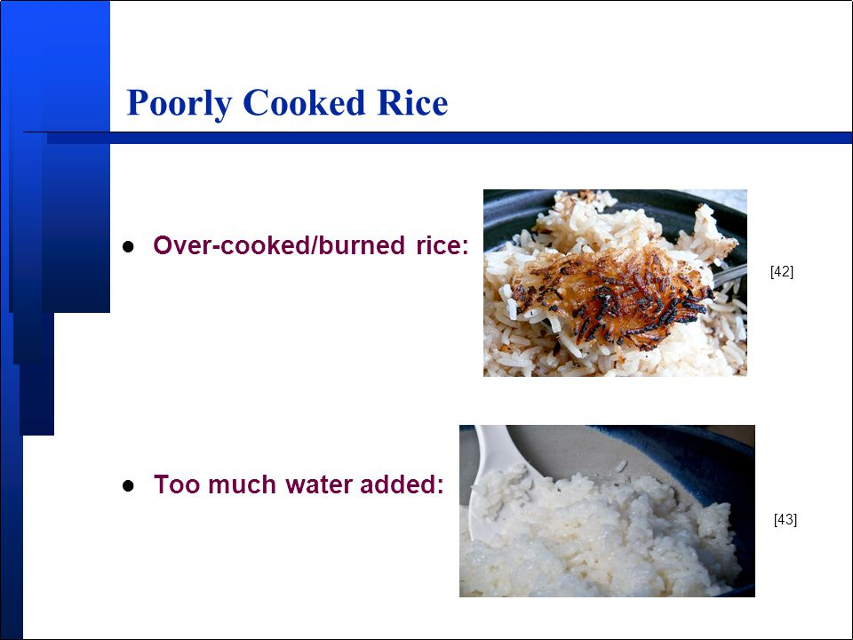 Poorly Cooked Rice l Over-cooked/burned rice: l Too much water added: [42] [43]