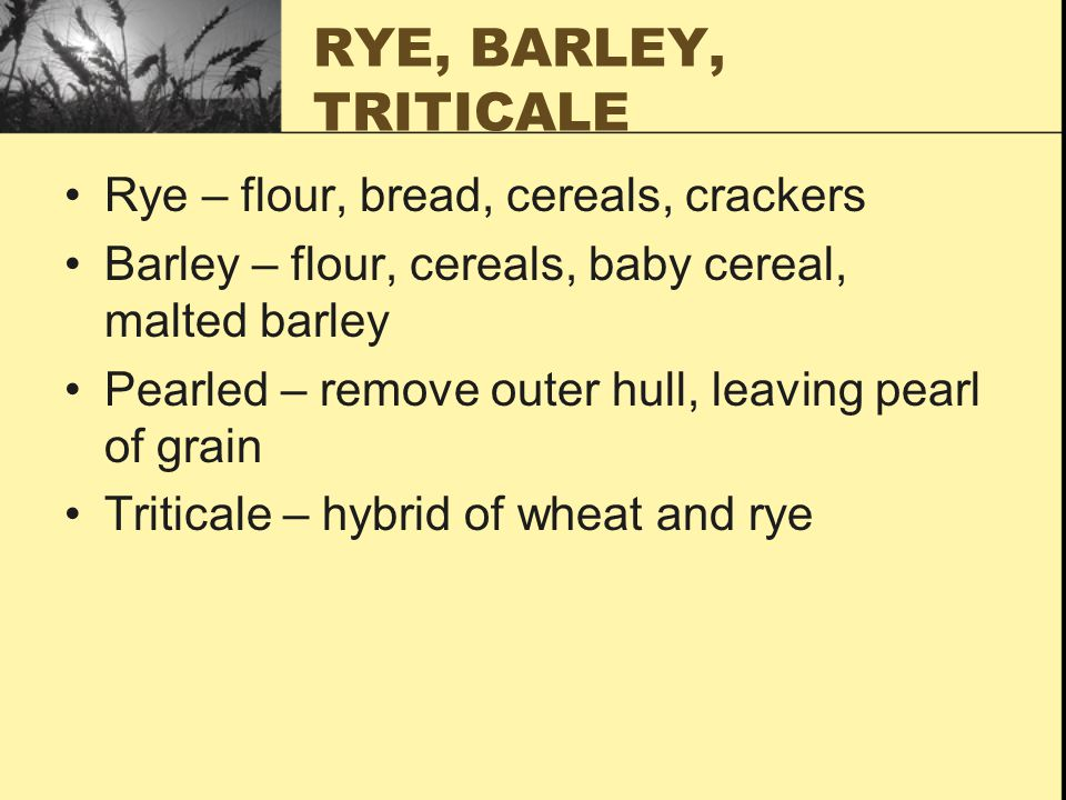 RYE, BARLEY, TRITICALE Rye – flour, bread, cereals, crackers Barley – flour, cereals, baby cereal, malted barley Pearled – remove outer hull, leaving