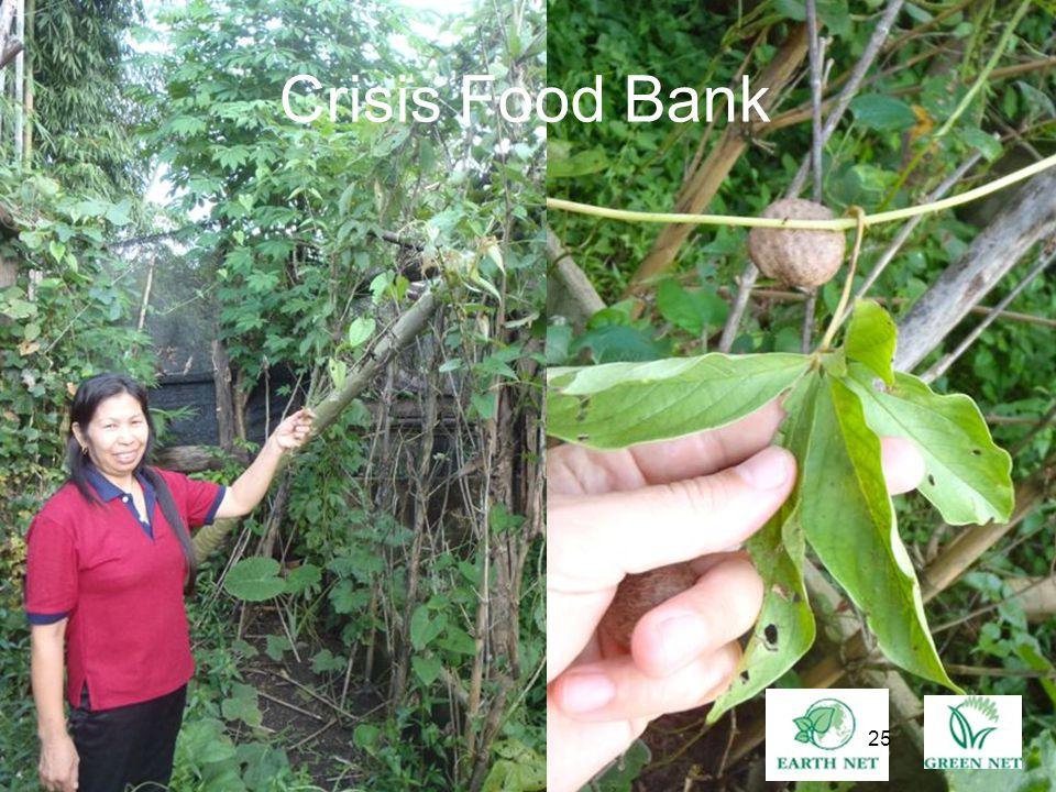 25 Crisis Food Bank 25
