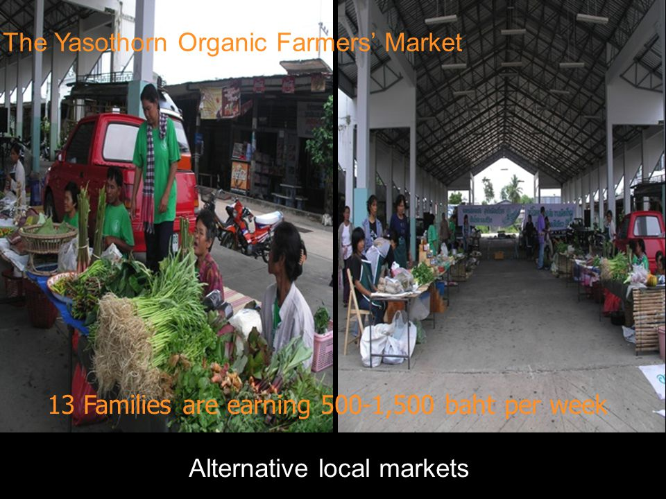 The Yasothorn Organic Farmers' Market 13 Families are earning 500-1,500 baht per week Alternative local markets