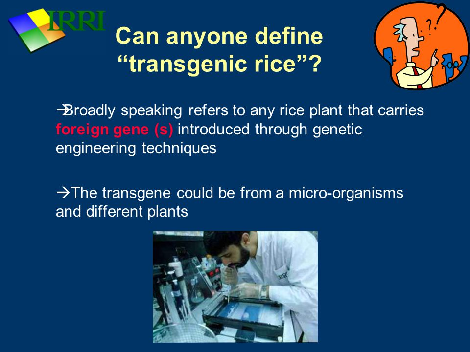 IRRI: Rice Production Course Can anyone define transgenic rice .
