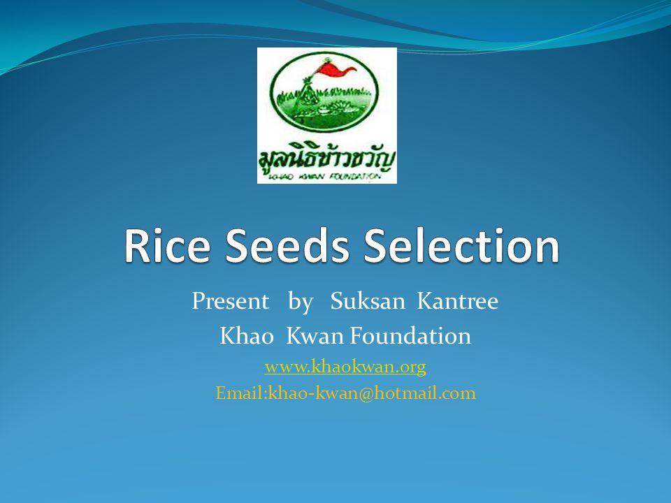 Present by Suksan Kantree Khao Kwan Foundation www.khaokwan.org Email:khao-kwan@hotmail.com