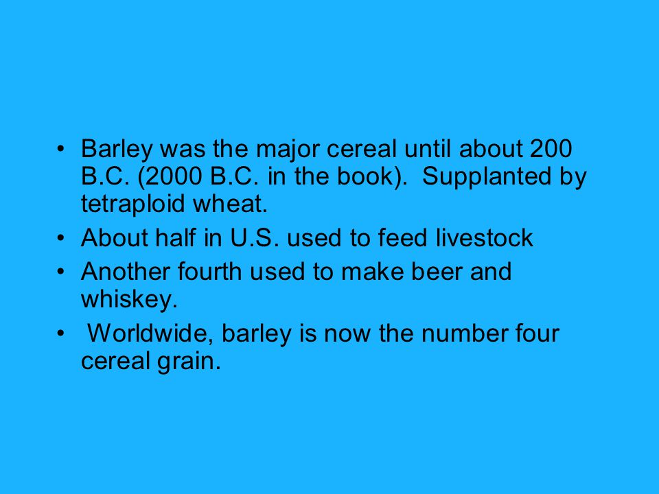 Barley was the major cereal until about 200 B.C. (2000 B.C.