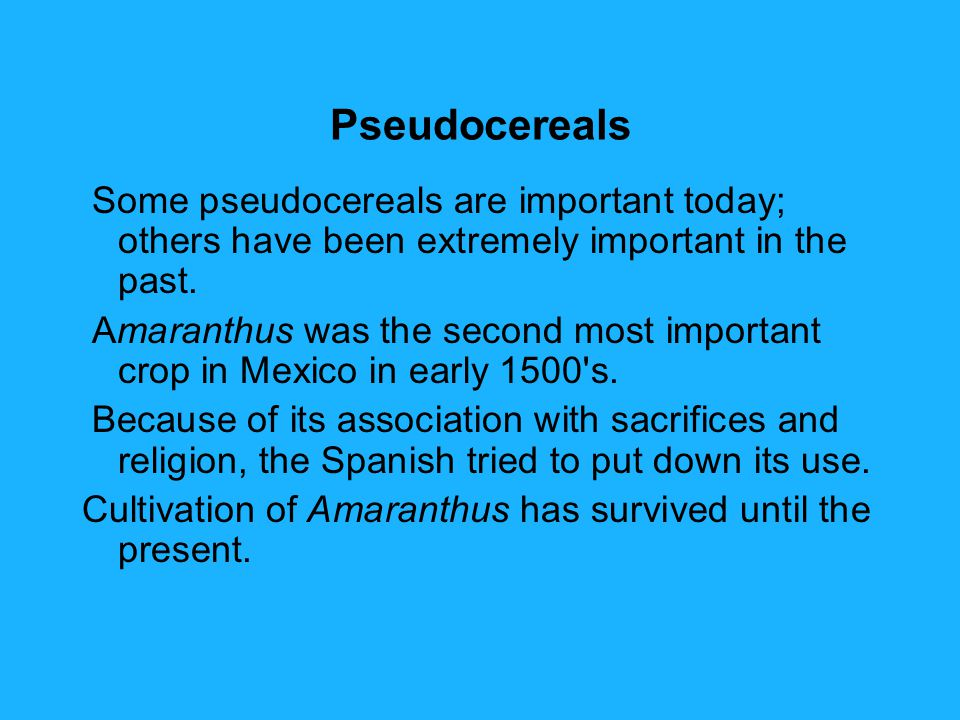 Pseudocereals Some pseudocereals are important today; others have been extremely important in the past.