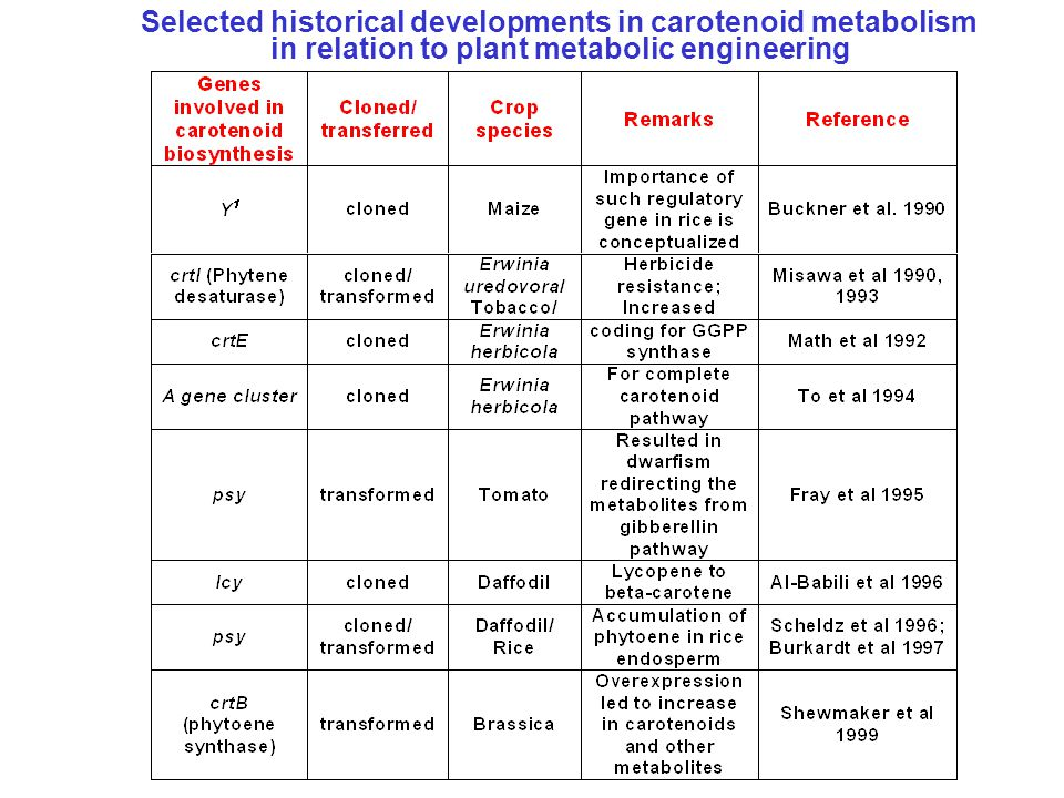 Selected historical developments in carotenoid metabolism in relation to plant metabolic engineering