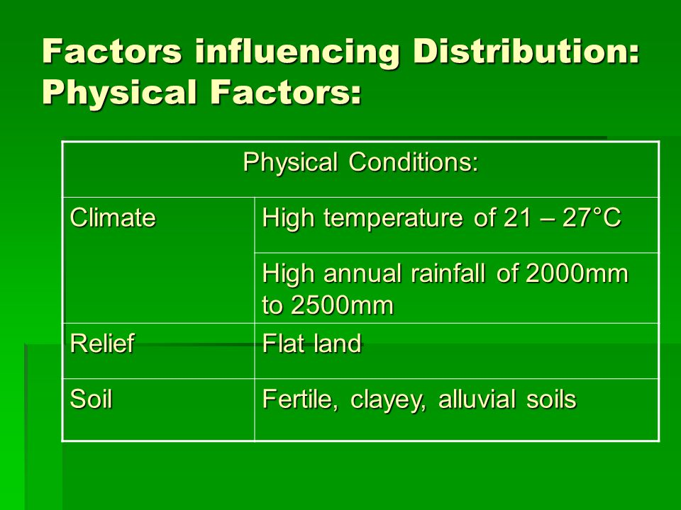 Factors influencing Distribution: Human Factors:  Labour  Requires a lot of labour  Practised in areas where there is an abundance of cheap labour such as India and Indonesia  Capital  Poor farmers use simple tools in their farming  Areas where labour lacking (Japan), capital is important to buy machines  Capital is also required in areas not arable to build irrigation facilities