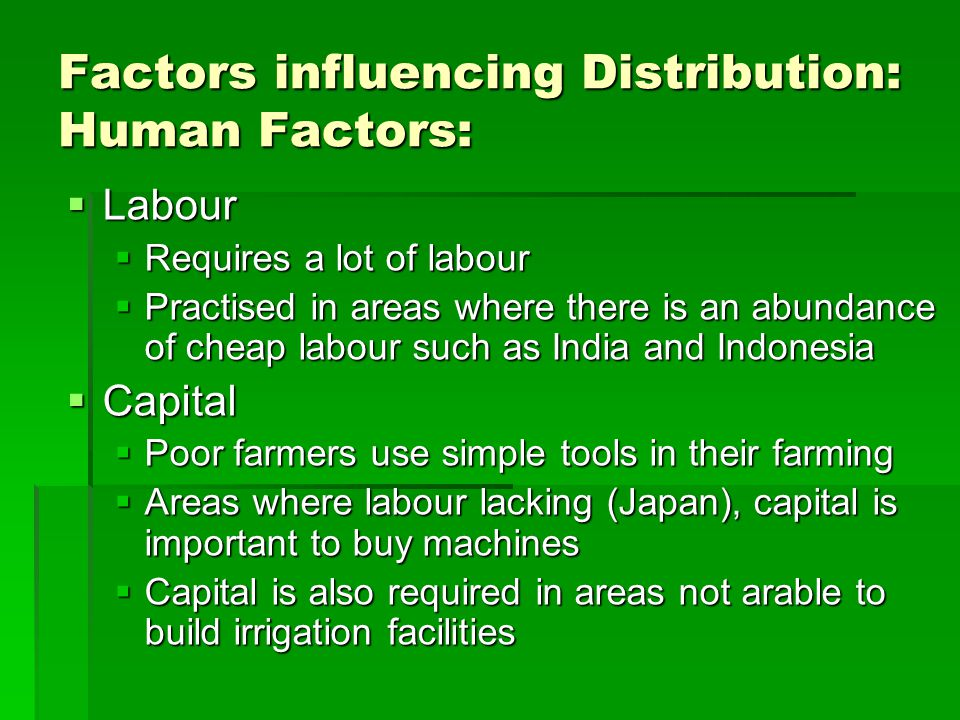 Factors influencing Distribution: Human Factors:  Technology  Use of technology such as irrigation in areas with low rainfall  Supply water all year round and allow more than one rice crop to be planted  Social Conditions  Traditional practices such as inheritance laws limits the size of the farm  Small farm size = low output = low income  Market and Transport  Not important consideration for subsistence farmers  For commercial farmers, close to the market help saves transport cost