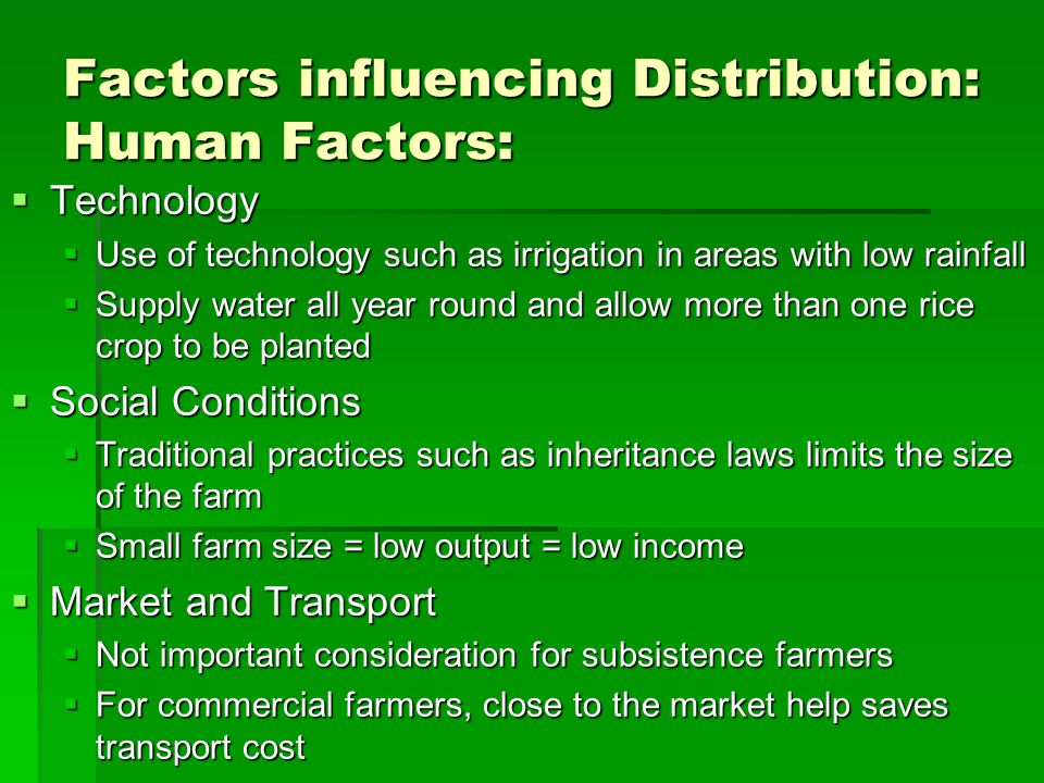 Factors influencing Distribution: Human Factors:  Government  Plays a significant role in improving practice of wet rice farming  Provide funding for building irrigation
