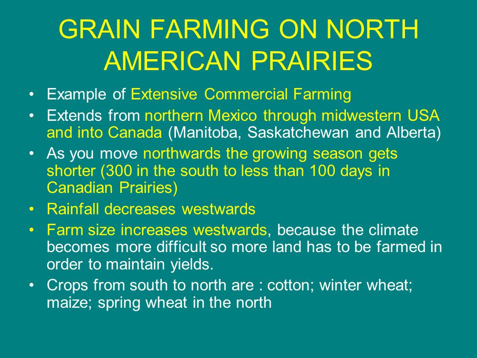 GRAIN FARMING ON NORTH AMERICAN PRAIRIES Example of Extensive Commercial Farming Extends from northern Mexico through midwestern USA and into Canada (Manitoba, Saskatchewan and Alberta) As you move northwards the growing season gets shorter (300 in the south to less than 100 days in Canadian Prairies) Rainfall decreases westwards Farm size increases westwards, because the climate becomes more difficult so more land has to be farmed in order to maintain yields.