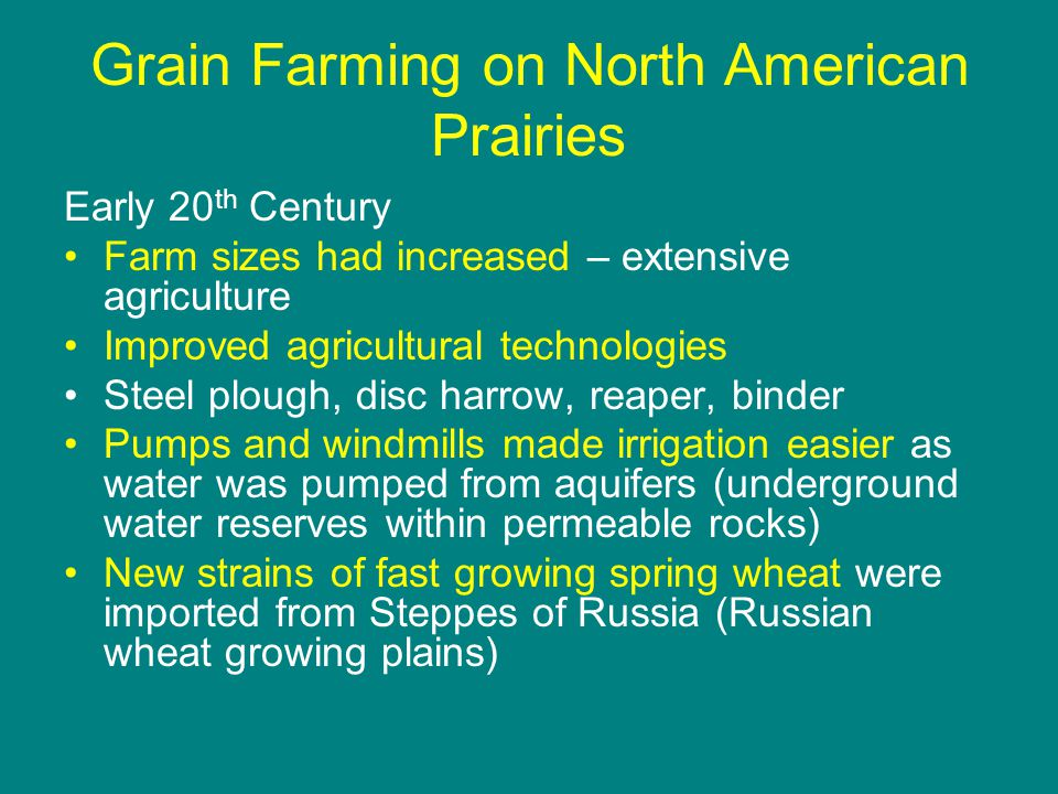 Grain Farming on North American Prairies Early 20 th Century Farm sizes had increased – extensive agriculture Improved agricultural technologies Steel plough, disc harrow, reaper, binder Pumps and windmills made irrigation easier as water was pumped from aquifers (underground water reserves within permeable rocks) New strains of fast growing spring wheat were imported from Steppes of Russia (Russian wheat growing plains)