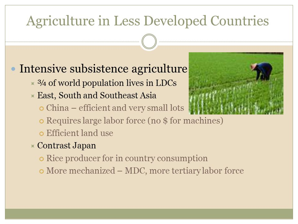 Agriculture in Less Developed Countries Intensive subsistence agriculture  ¾ of world population lives in LDCs  East, South and Southeast Asia China