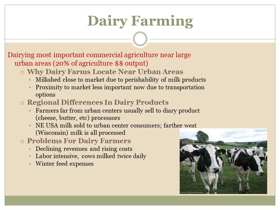 Dairying most important commercial agriculture near large urban areas (20% of agriculture $$ output) Why Dairy Farms Locate Near Urban Areas Milkshed