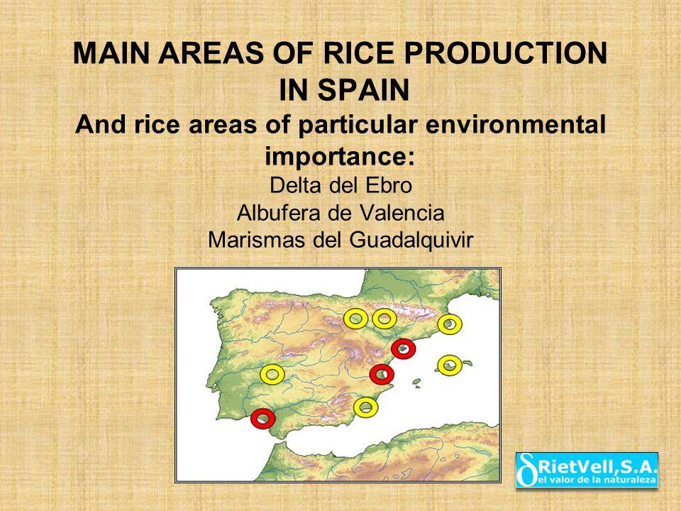 MAIN AREAS OF RICE PRODUCTION IN SPAIN And rice areas of particular environmental importance: Delta del Ebro Albufera de Valencia Marismas del Guadalquivir