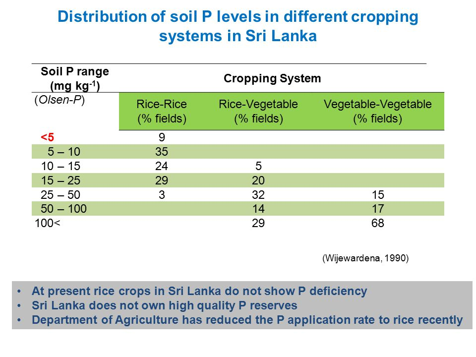 Soil P range (mg kg -1 ) Cropping System (Olsen-P) Rice-Rice (% fields) Rice-Vegetable (% fields) Vegetable-Vegetable (% fields) <5 9 5 – 10 35 10 – 15 245 15 – 25 2920 25 – 50 33215 50 – 100 1417 100< 2968 Distribution of soil P levels in different cropping systems in Sri Lanka (Wijewardena, 1990) At present rice crops in Sri Lanka do not show P deficiency Sri Lanka does not own high quality P reserves Department of Agriculture has reduced the P application rate to rice recently