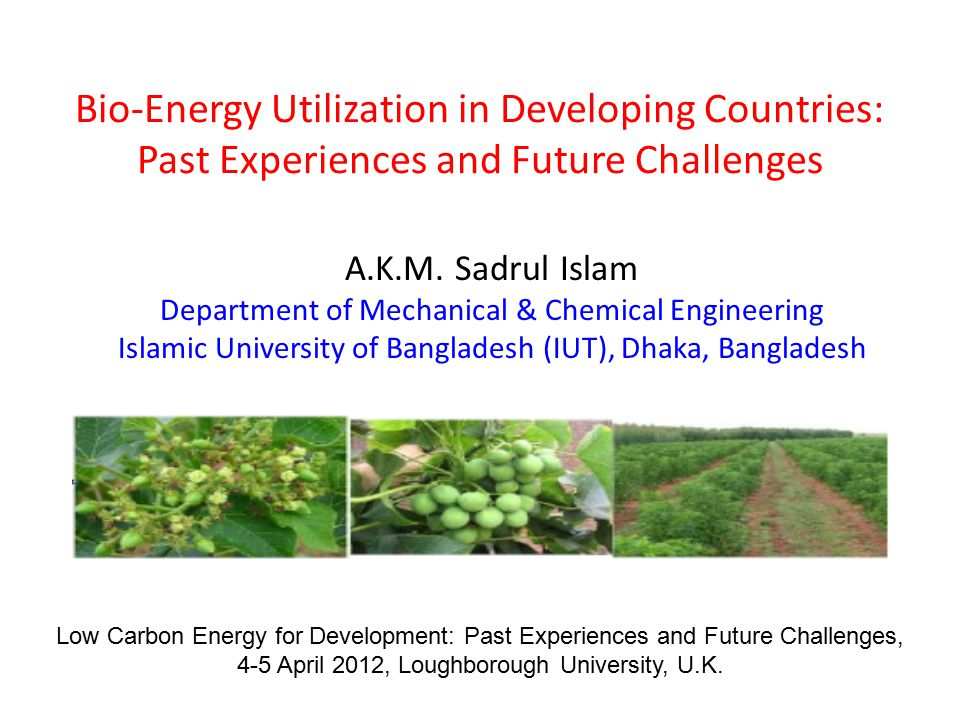 Bio-Energy Utilization in Developing Countries: Past Experiences and Future Challenges A.K.M.