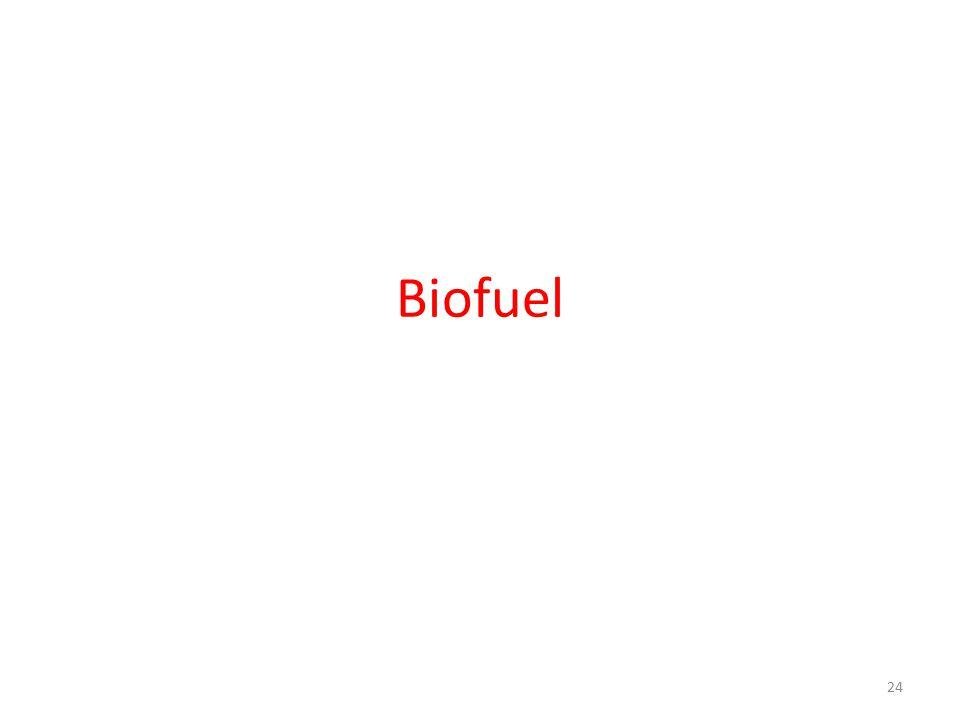 Biofuel 24