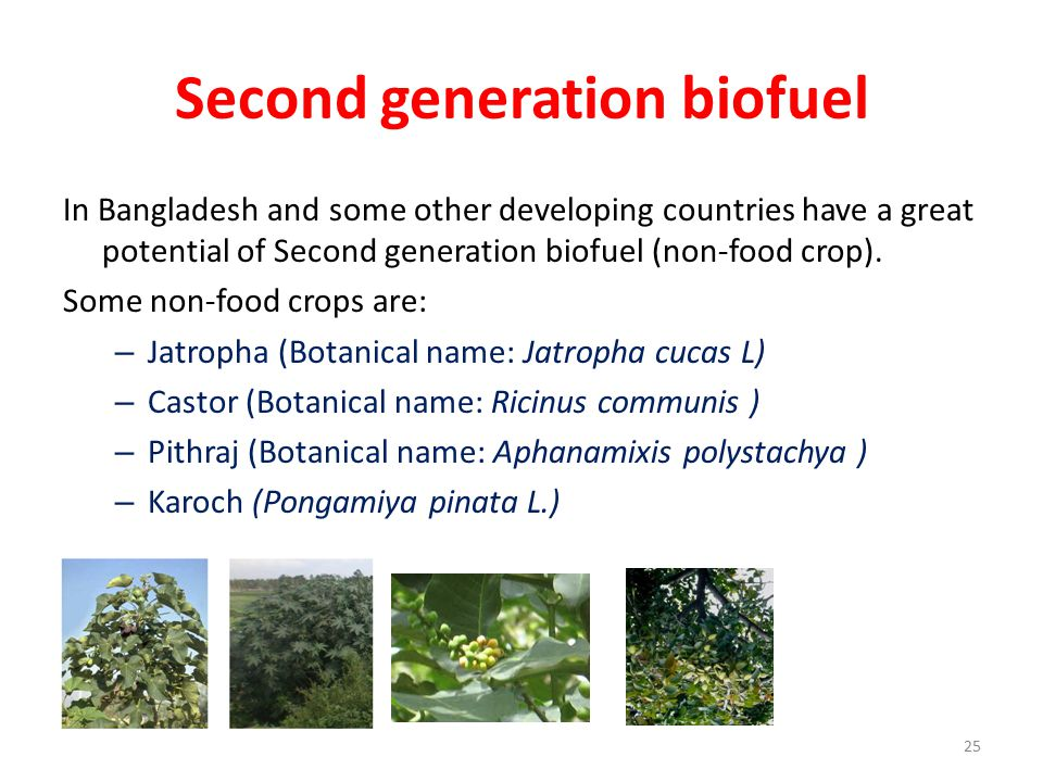 Second generation biofuel In Bangladesh and some other developing countries have a great potential of Second generation biofuel (non-food crop).
