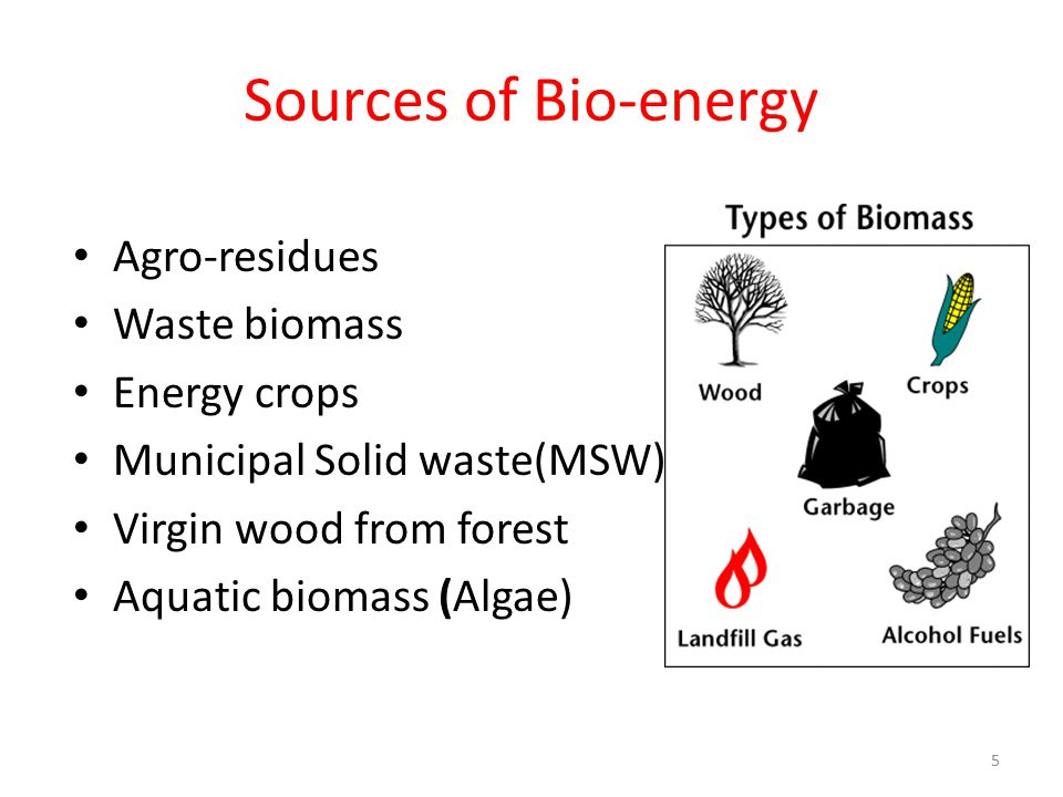 Sources of Bio-energy Agro-residues Waste biomass Energy crops Municipal Solid waste(MSW) Virgin wood from forest Aquatic biomass (Algae) 5