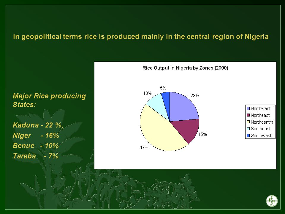 Major Rice producing States: Kaduna - 22 %, Niger - 16% Benue - 10% Taraba - 7% In geopolitical terms rice is produced mainly in the central region of Nigeria