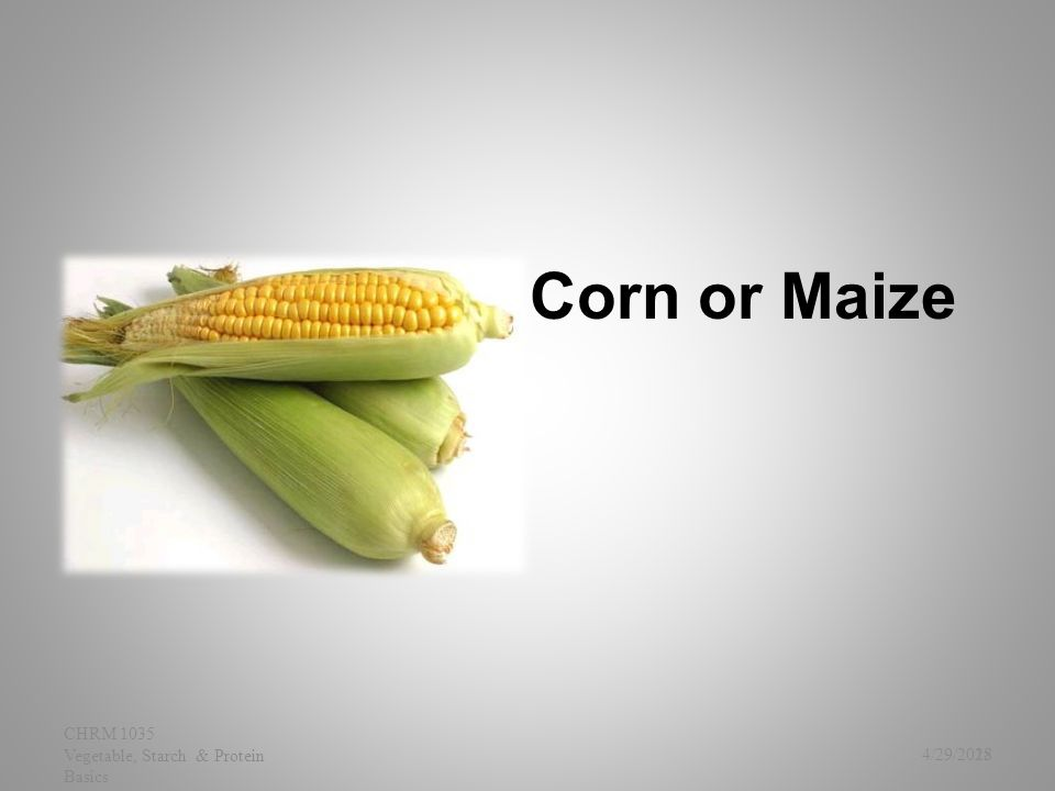 Corn or Maize 4/29/2015 CHRM 1035 Vegetable, Starch & Protein Basics 28