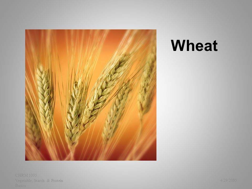 Wheat 4/29/2015 CHRM 1035 Vegetable, Starch & Protein Basics 35
