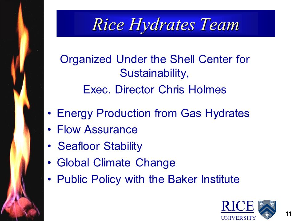 RICE UNIVERSITY 11 Rice Hydrates Team Organized Under the Shell Center for Sustainability, Exec. Director Chris Holmes Energy Production from Gas Hydr