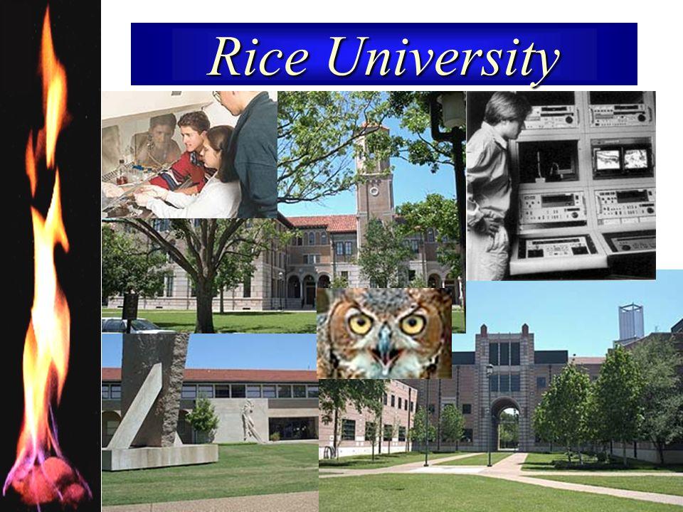 RICE UNIVERSITY 17 Rice University