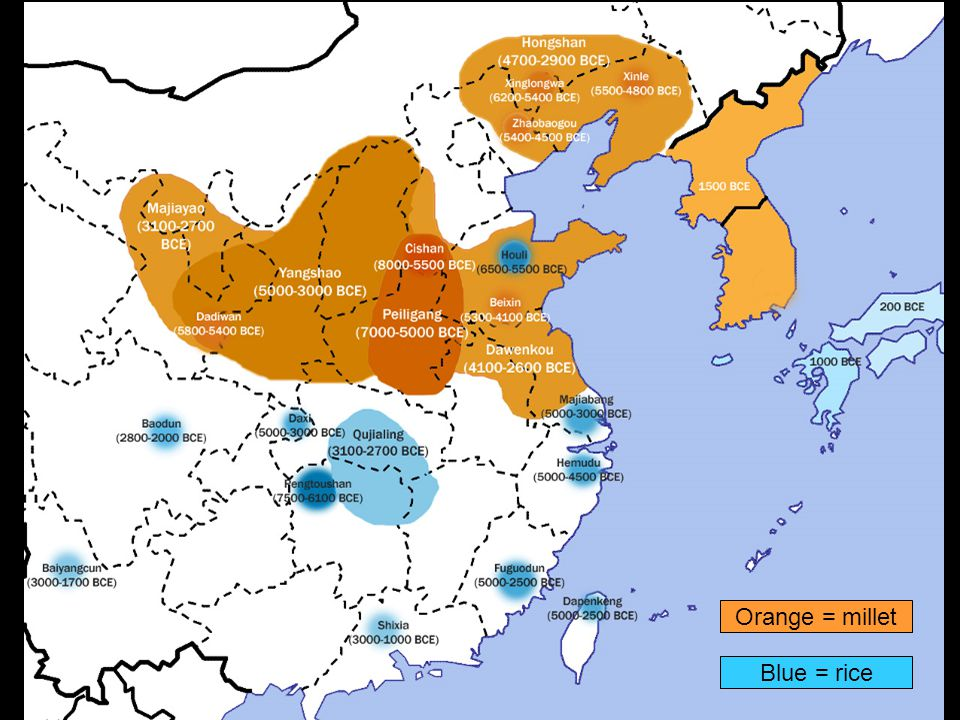 Transition to Agriculture in the Yellow River: Millet Hunter-gatherer sites until 7,500 BC (Xiachuan Caves, Shunwangpin); denticulate tool with sheen from harvesting grasses, such as wild green foxtail millet Nanzhuangtou (10,500-7,500 BC) –Small sample of pot sherds –Grinding stone –Possibly domestic pig bones (earliest in central China) and dog
