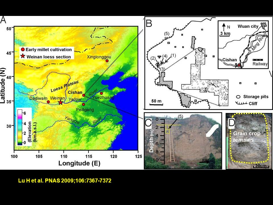 Map Source: Higham s The Bronze Age of Southeast Asia (1996) Ban Non Wat Rice Agriculture