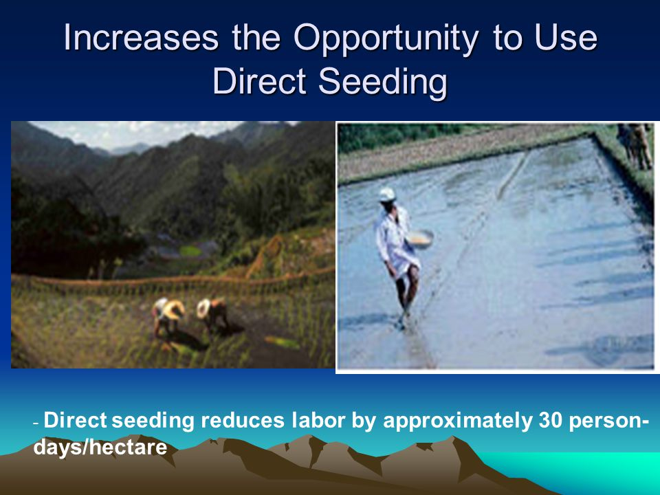 Increases the Opportunity to Use Direct Seeding - Direct seeding reduces labor by approximately 30 person- days/hectare