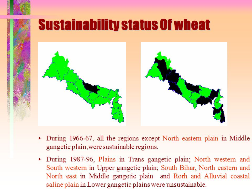 Sustainability status Of wheat 1966-671996-97 Unsustainable region Unsustainable regions During 1966-67, all the regions except North eastern plain in