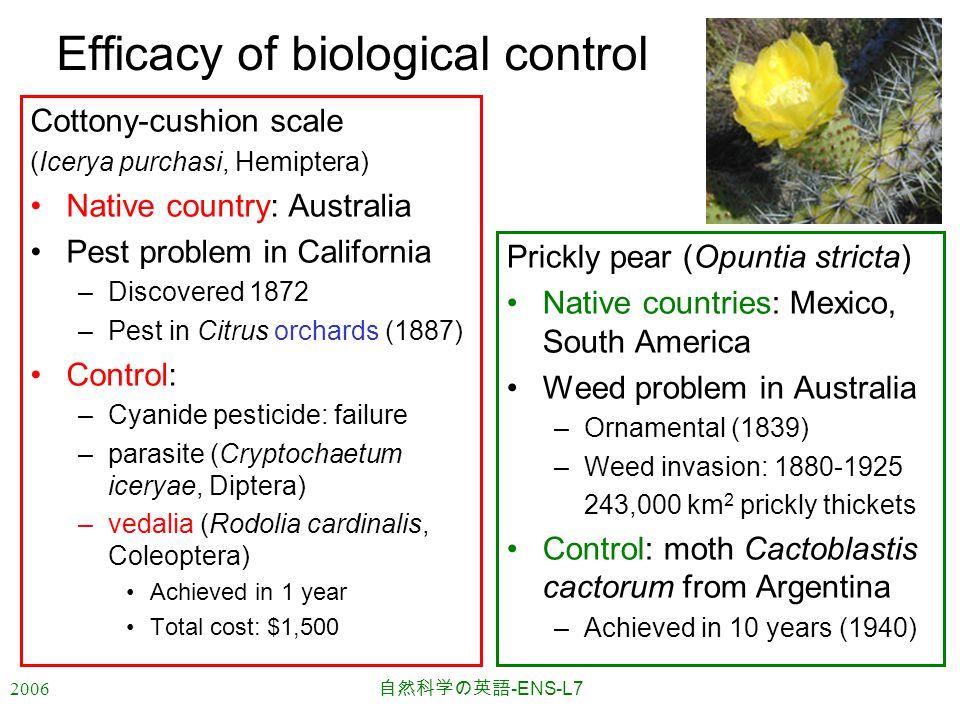 2006 自然科学の英語 -ENS-L7 Efficacy of biological control Cottony-cushion scale (Icerya purchasi, Hemiptera) Native country: Australia Pest problem in Calif